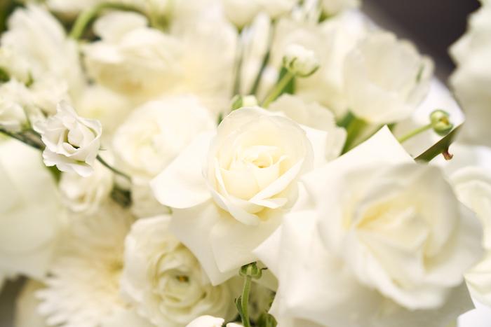 White Elegance-2.jpg