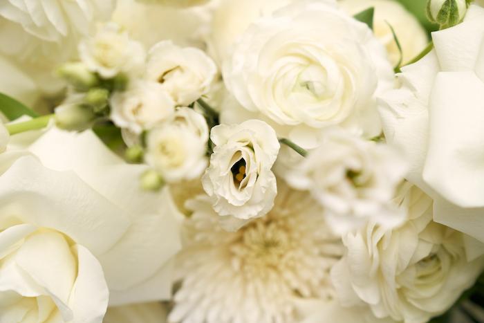 White Elegance-5.jpg