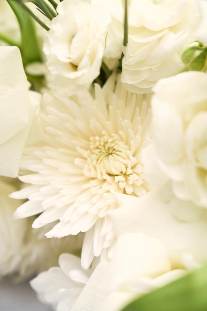 White Elegance-6.jpg