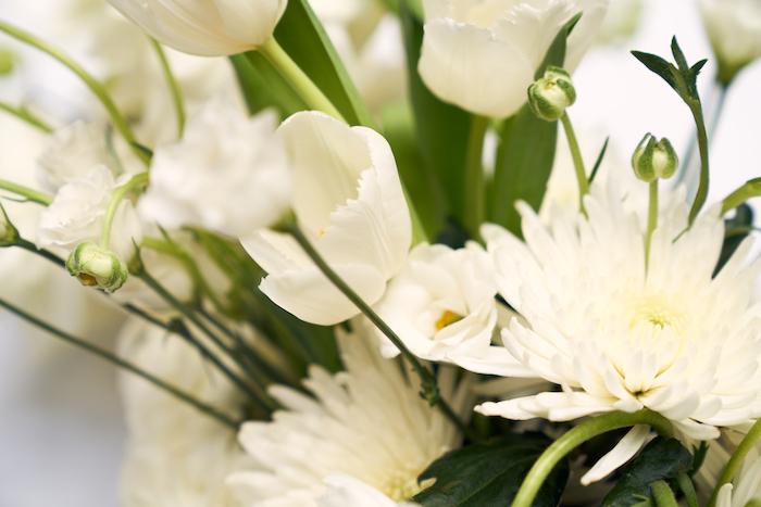 White Elegance-7.jpg