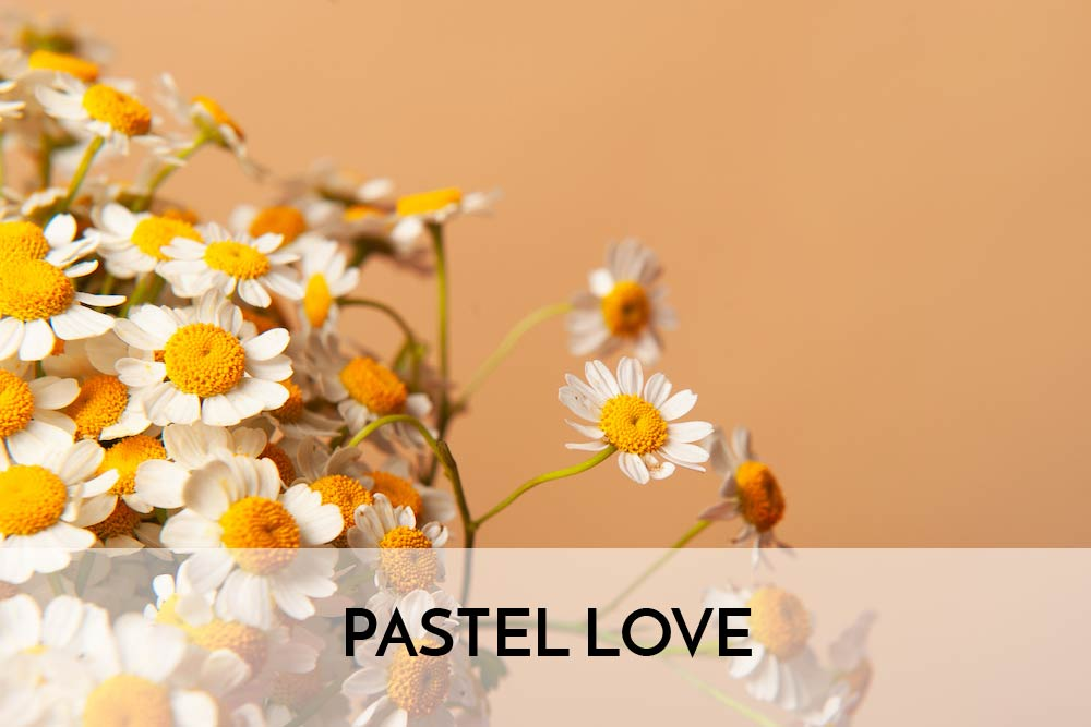 Pastel Love.jpg
