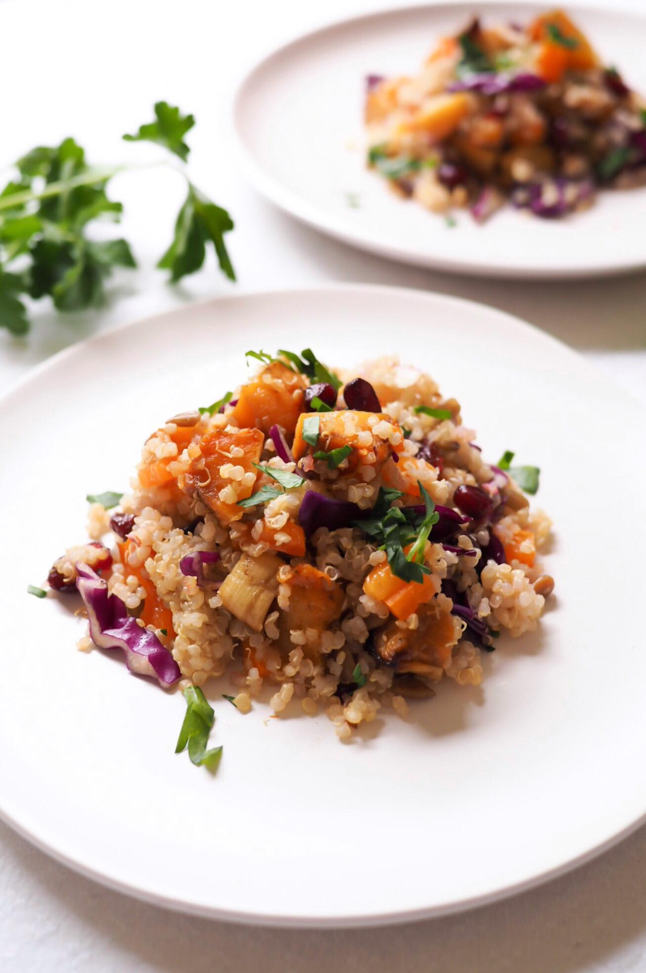 Sweet Roasted Squash Quinoa Salad