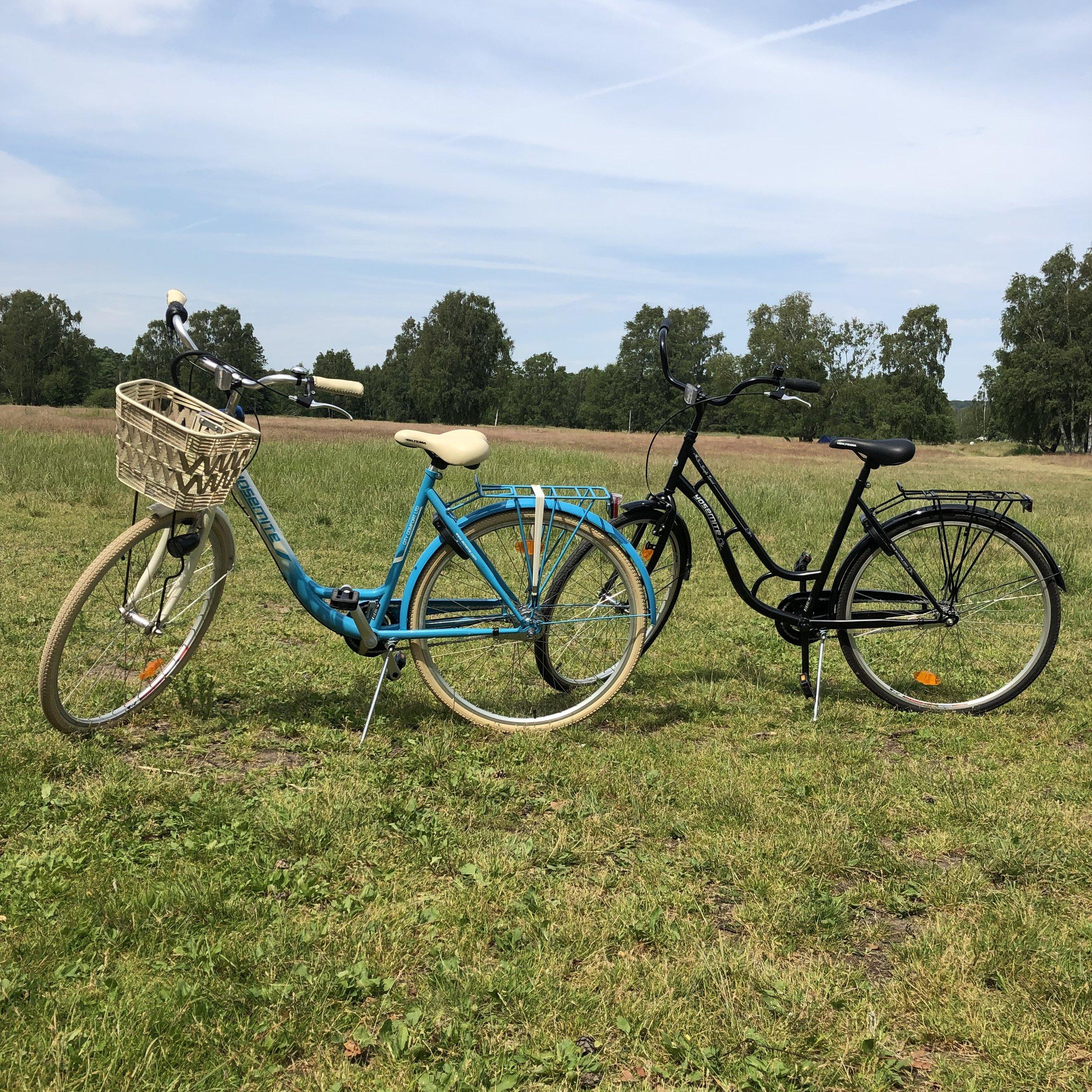 Livet att man kan cykla till stranden!