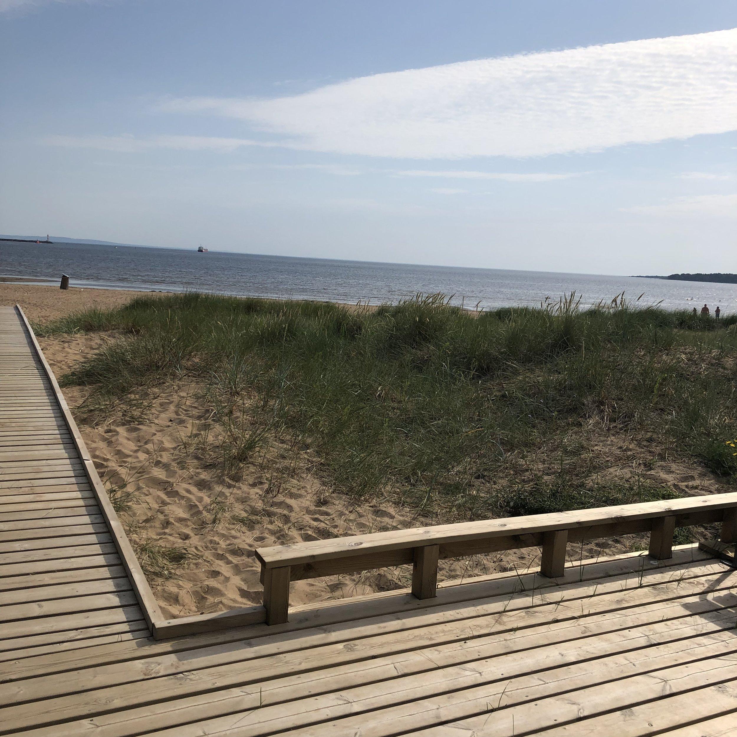 Västra stranden 2019.