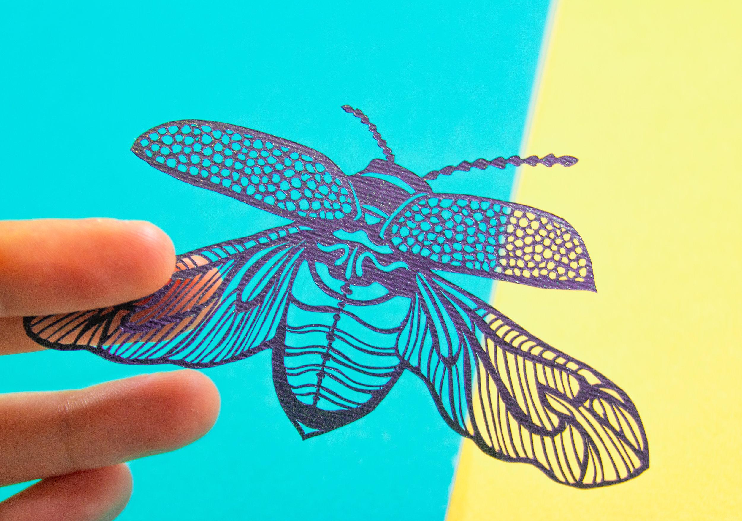 cutout beetle.jpg