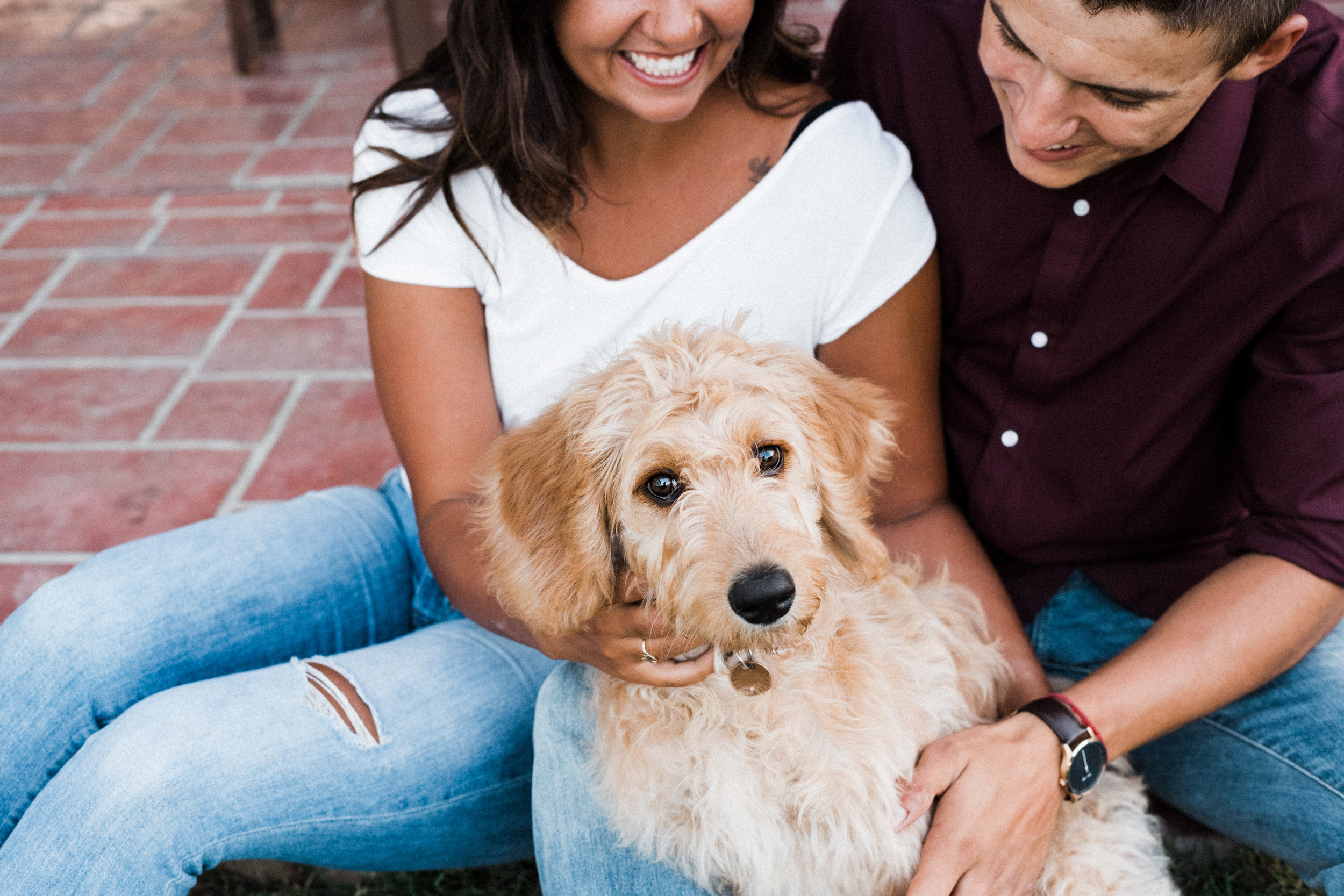 Engaged couple smiles as they play with their Goldendoodle.