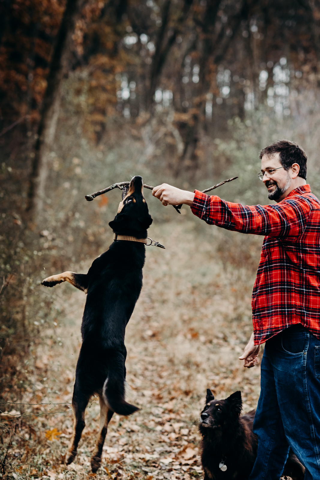 Man holds a stick up in the air, and his dog jumps to catch it.