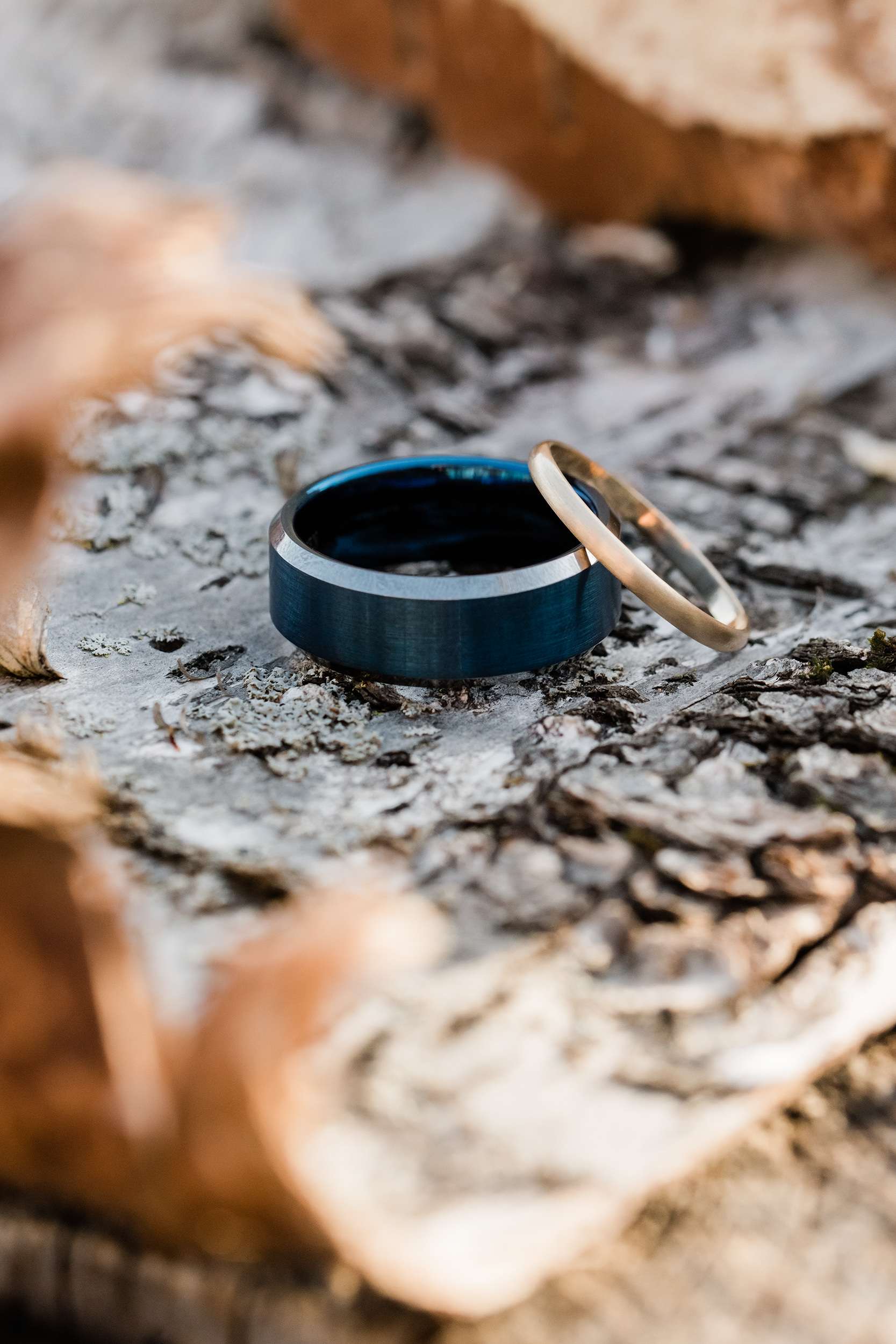 Wedding bands on birch bark