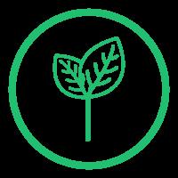 RSG Logo__Grow Color.png