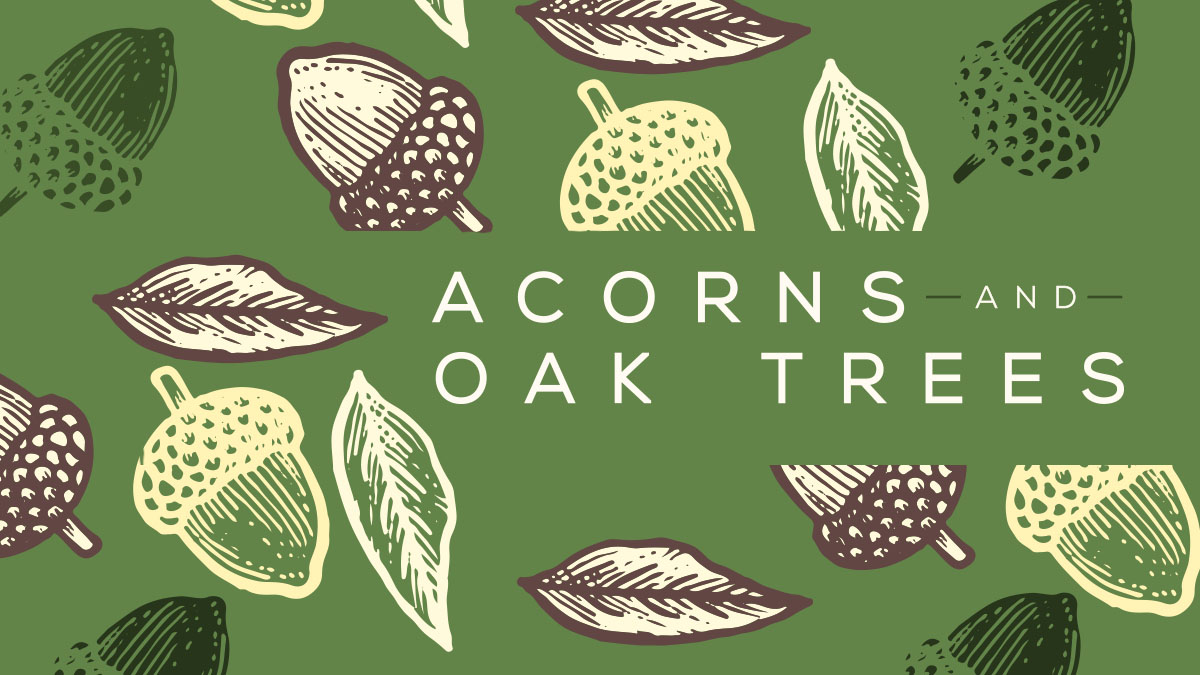 Acorns-and-Oak-Trees_FB Cover.jpg