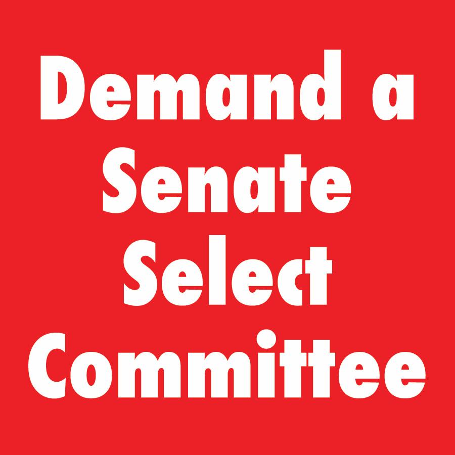 SenateSelect.jpg