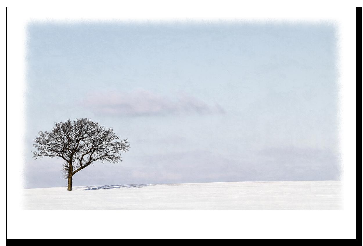 vinter skygge