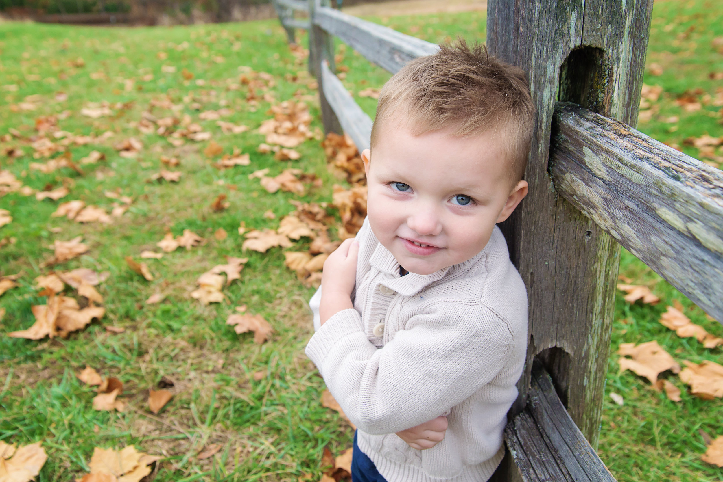 st-louis-fall-mini-sessions-2018-family-photographer-preschool-boy-arm-folded-leaning-on-wooden-fence.jpg