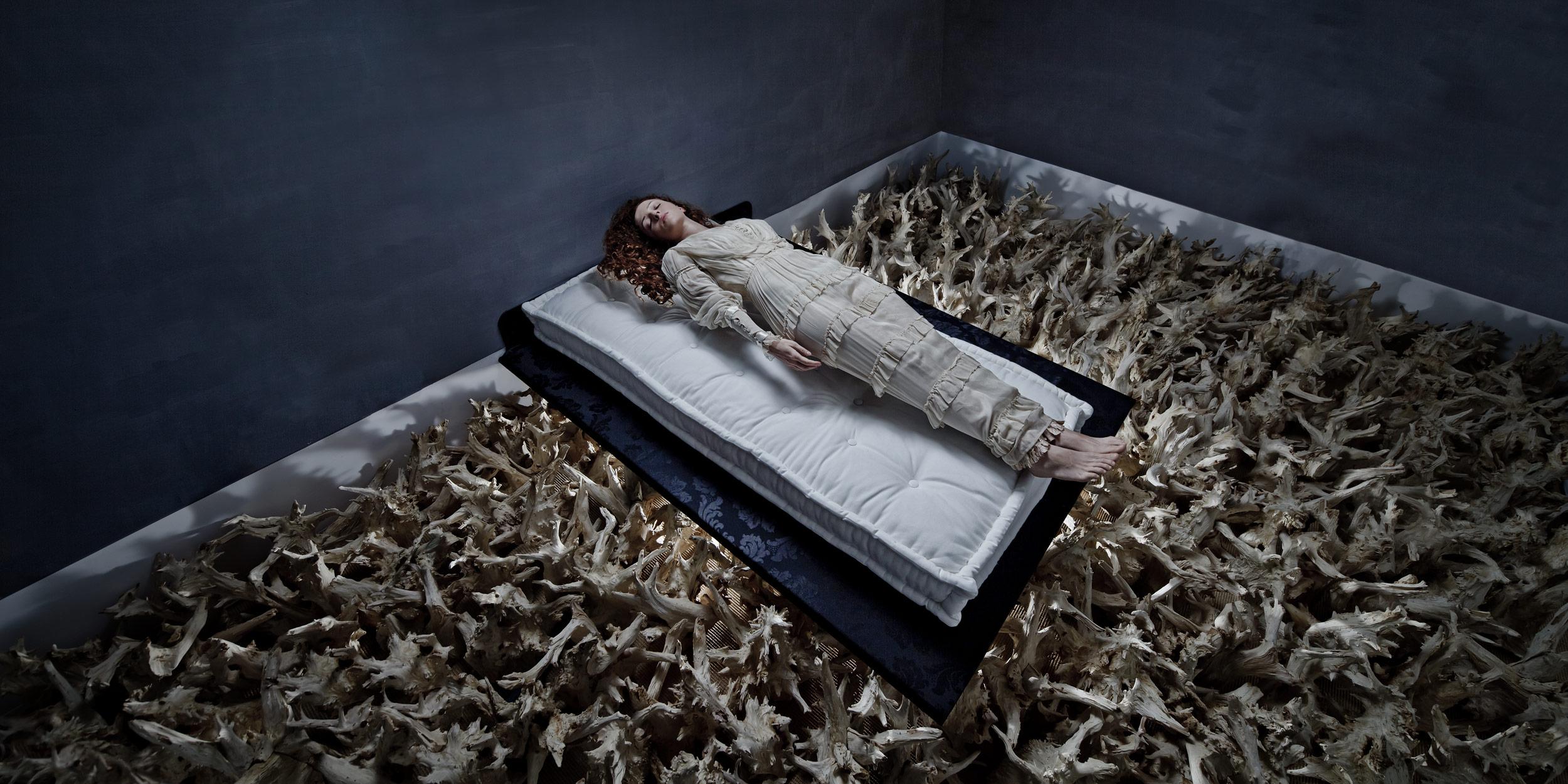 Sleeping Beauty<em> <p> 2011</em>