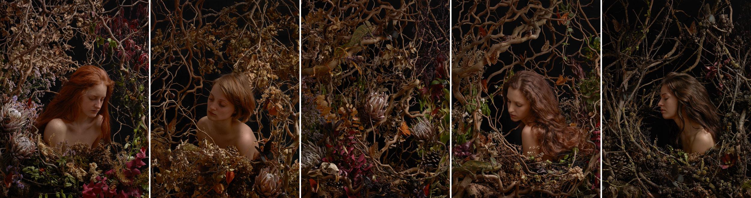 Fading Flowers series<em> <p> 2014</em>