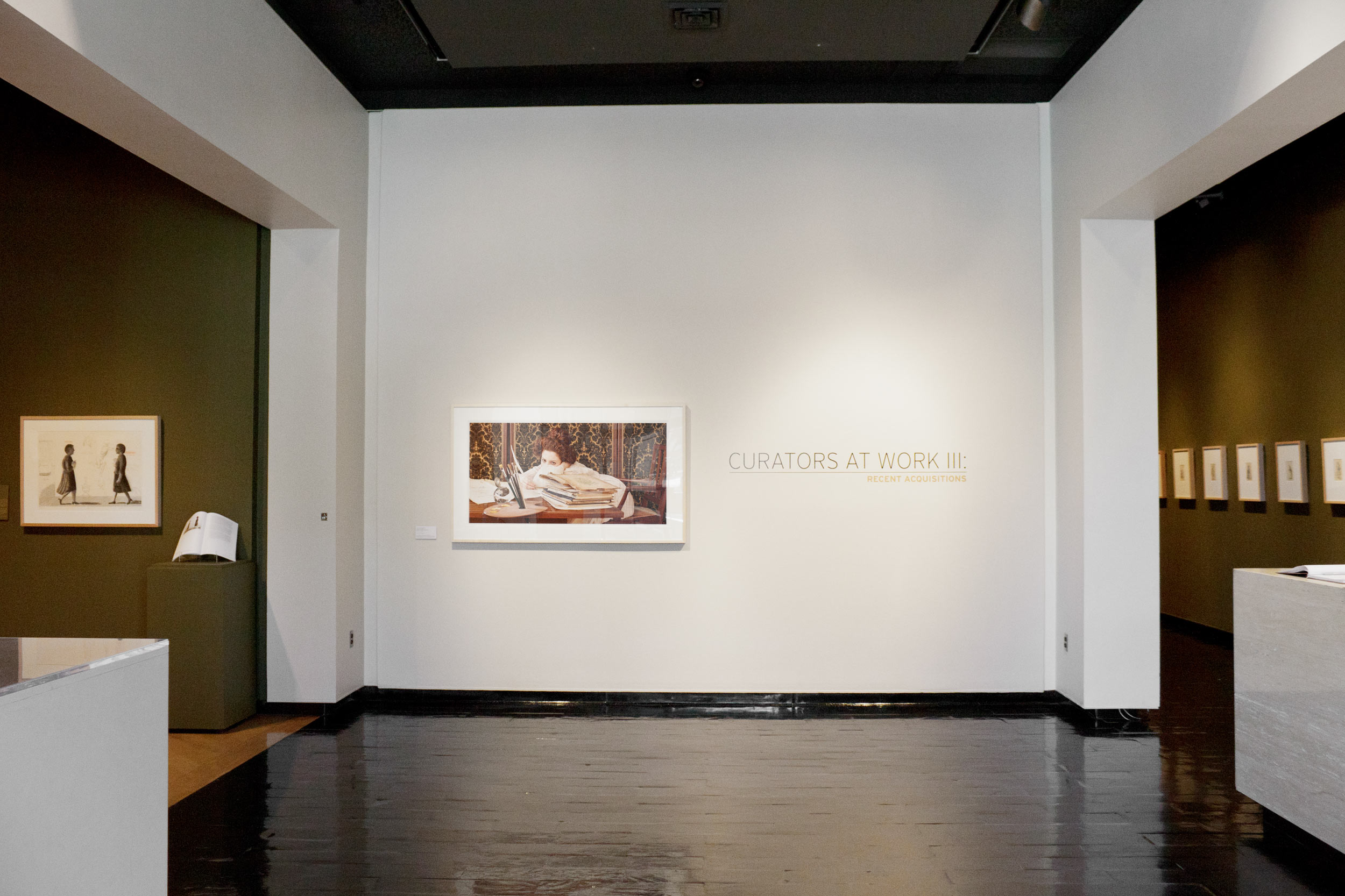 Tania & Lazlo's exhibithion at Muscarelle Museum of Art USAcurated by John T. Spike