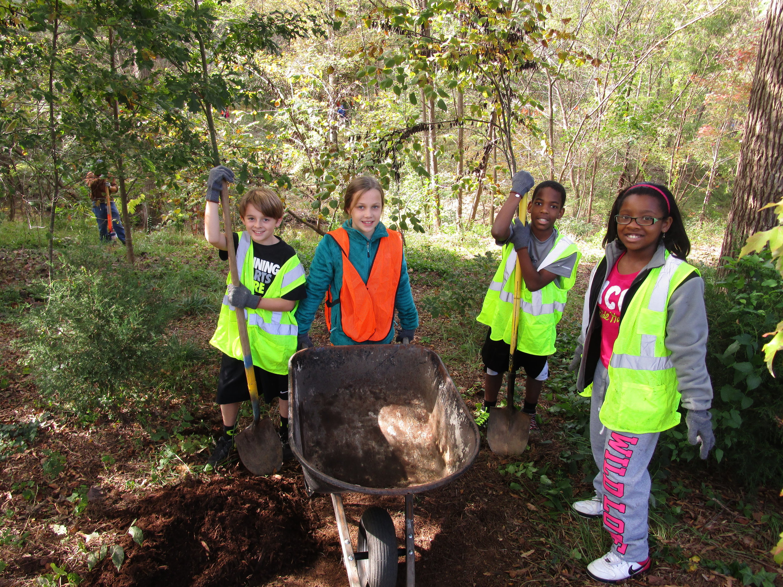 planting trees to restore and preserve the natural environment