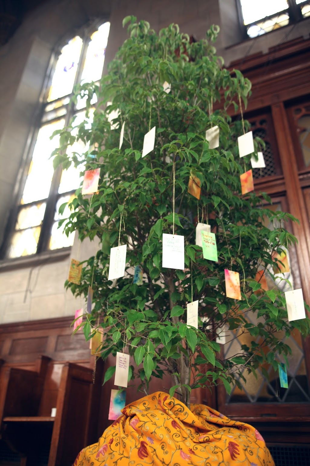 A tree in tribute to Gene at the Fourth International Conference on Focusing-Oriented Therapy in June, 2017.