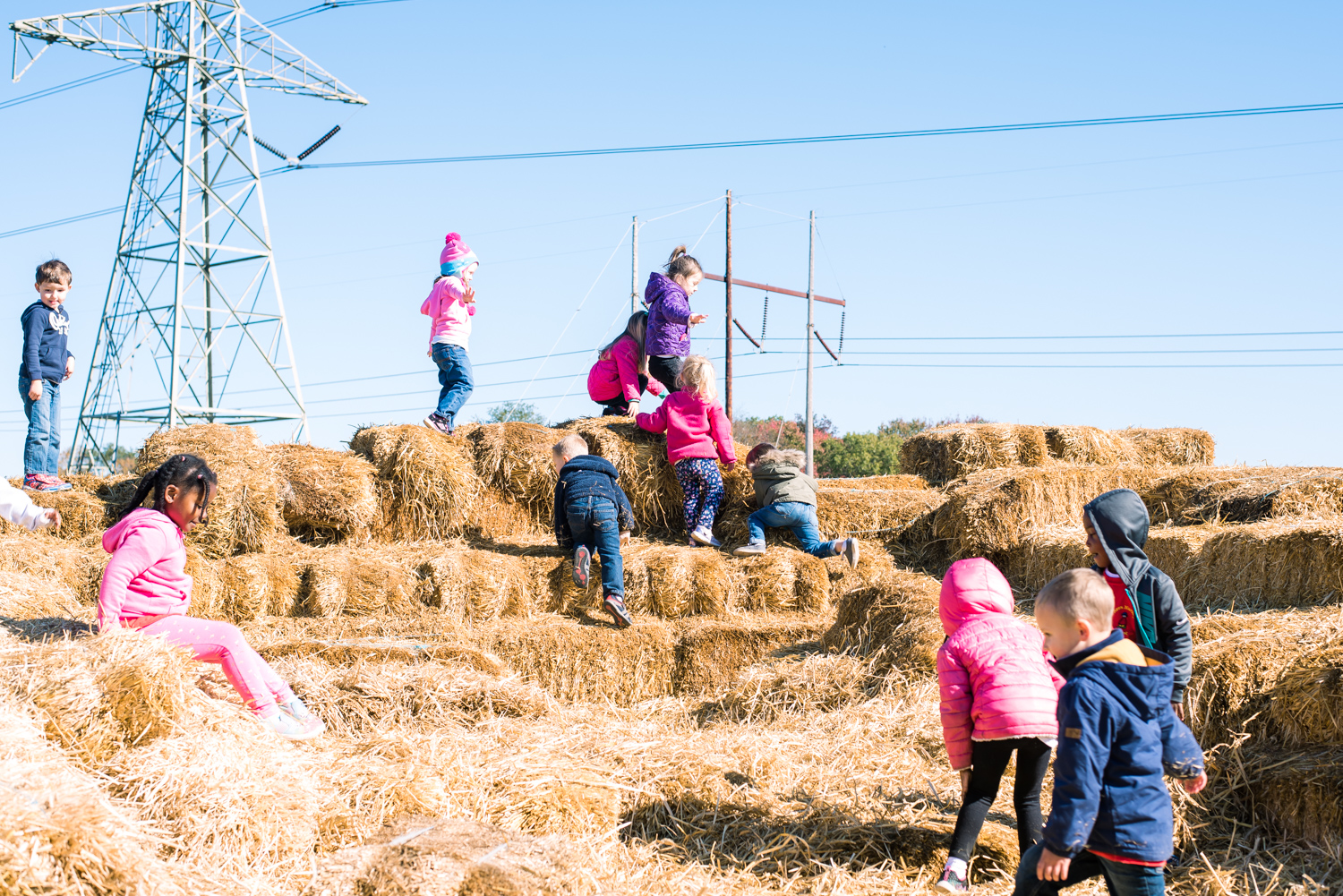 Climbing the Haystack at Wardsberry Farm (10 of 1).jpg