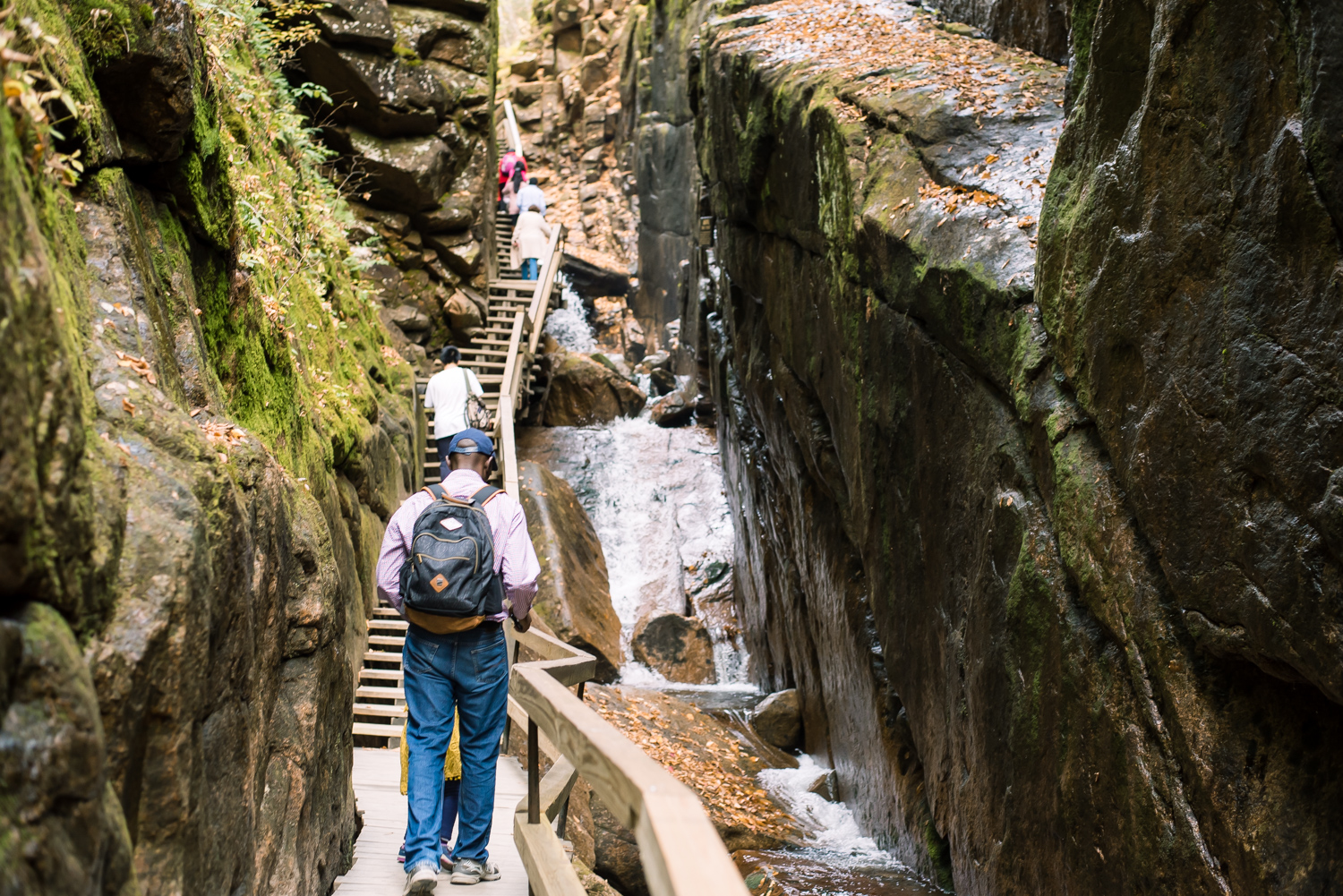 hiking Flume Gorge (8 of 1).jpg