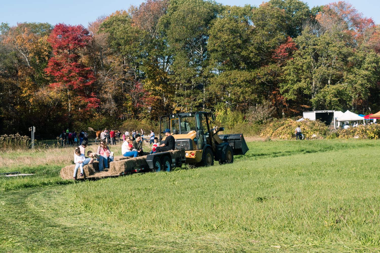 HayRide on tractor at Powers Farm Randolph (1 of 1).jpg