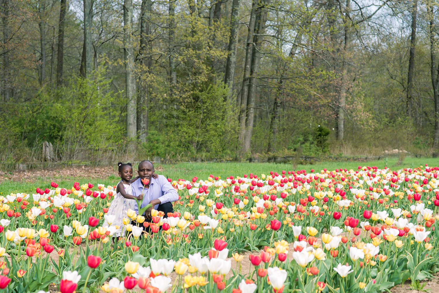 Daughter Giving Father Tulips (3 of 1).JPG