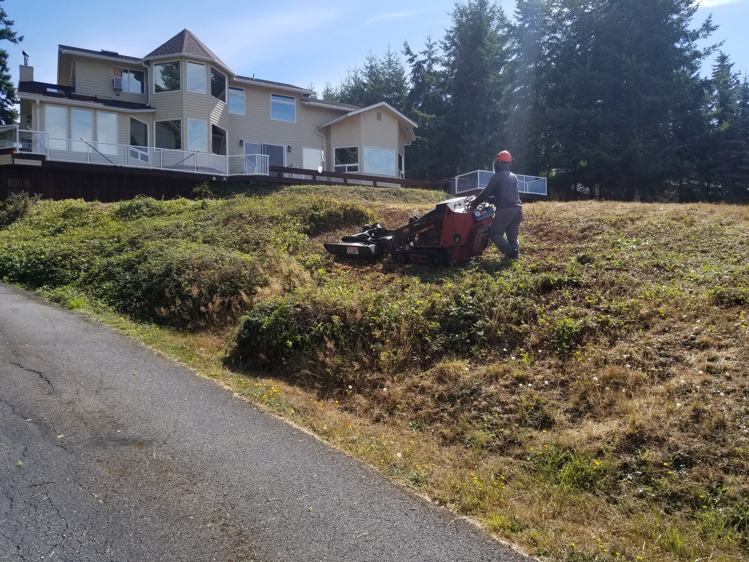 Brush hog mowing 1.jpg
