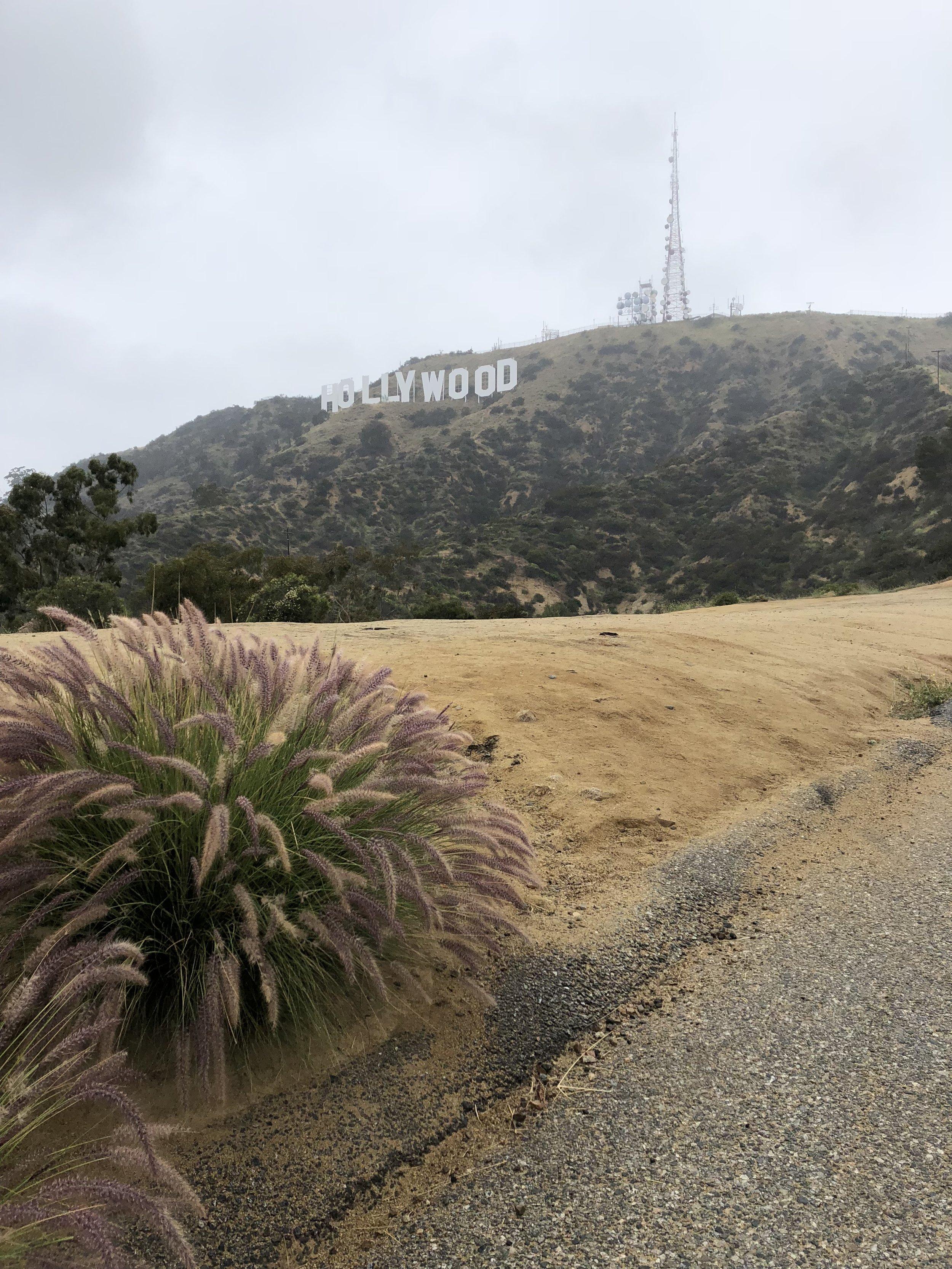 Hollywood Sign short hike