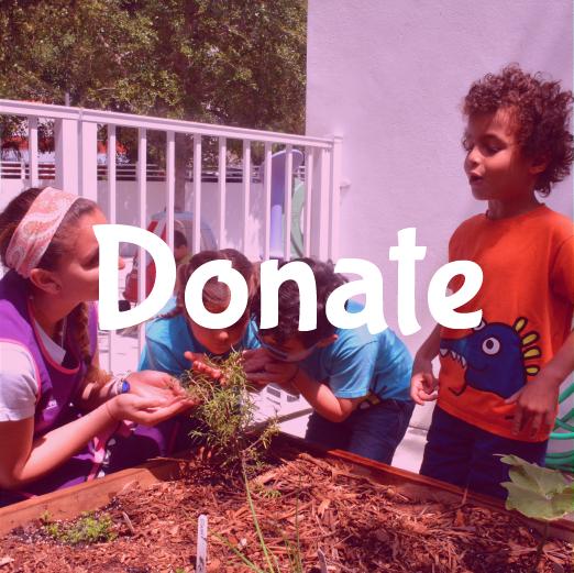 DonateThumb-01-01.png