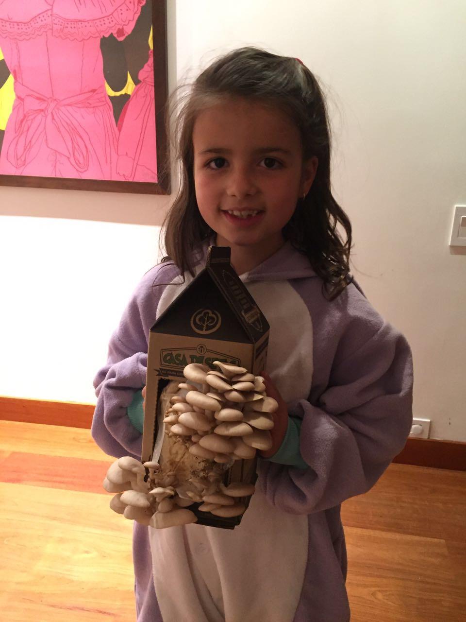 Elisa cultivo hongos en casa!