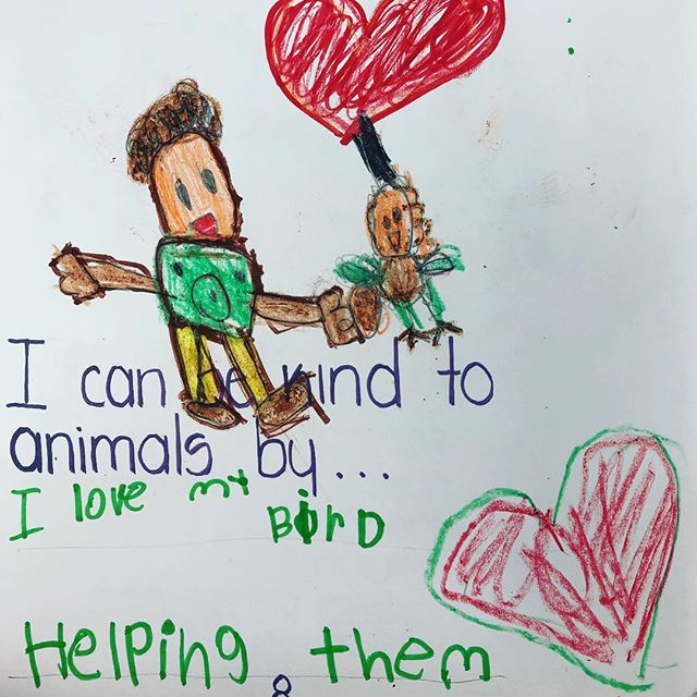 Animals are here for us to love them!