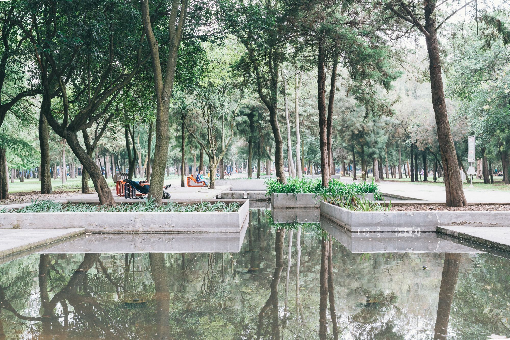 A Small part of the massive Chapultepek Park