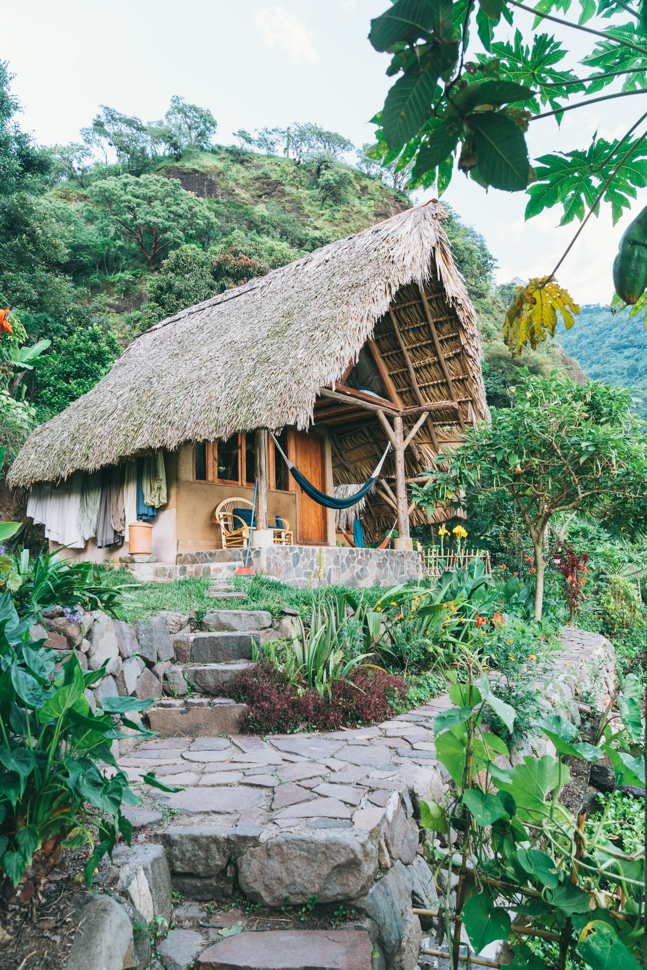 The yoga Forest Accommodations