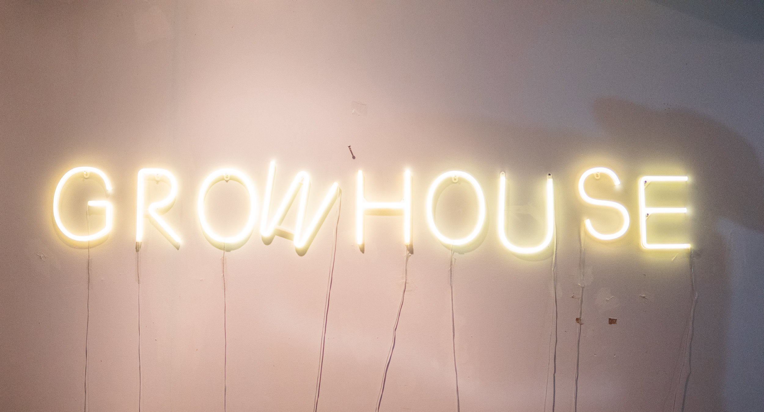 GrowHouse Lights.jpg