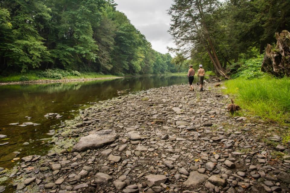 creek chan liam.jpg