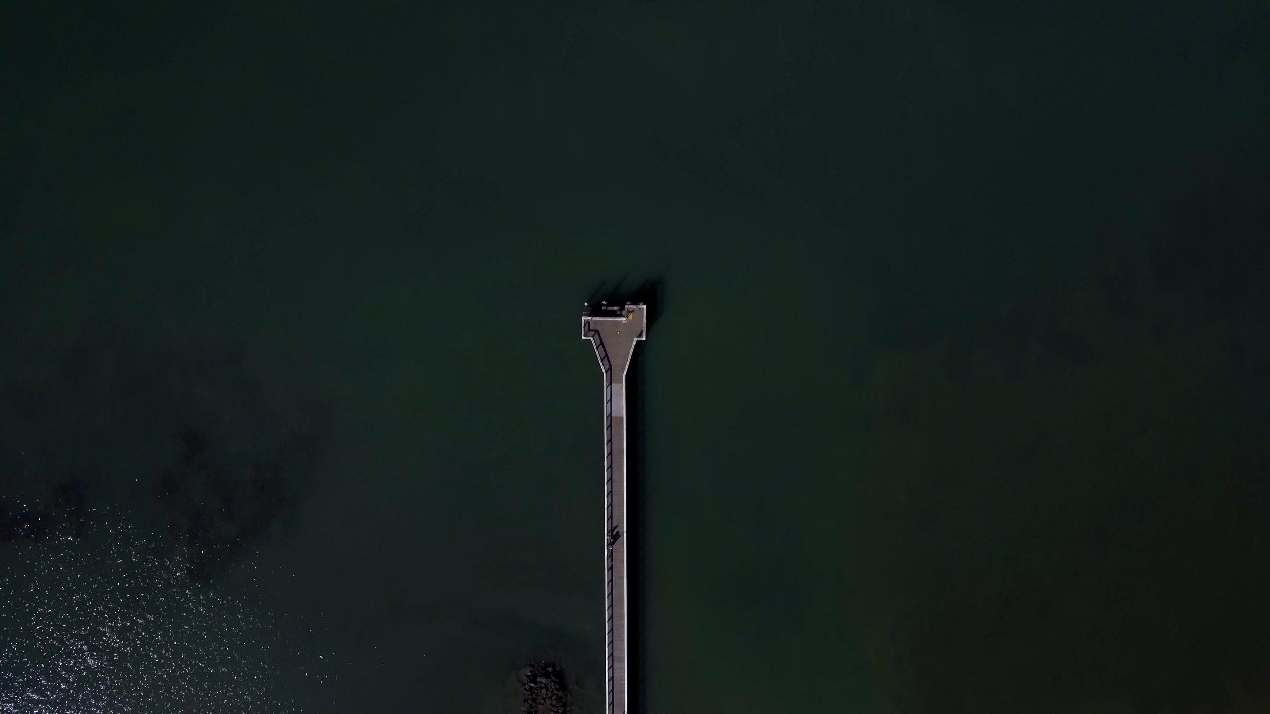 Wellington5.jpg