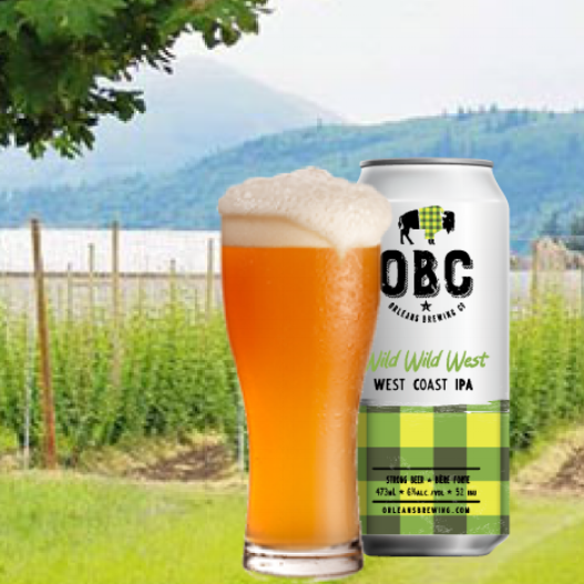you want hops... west coast ipa has loads
