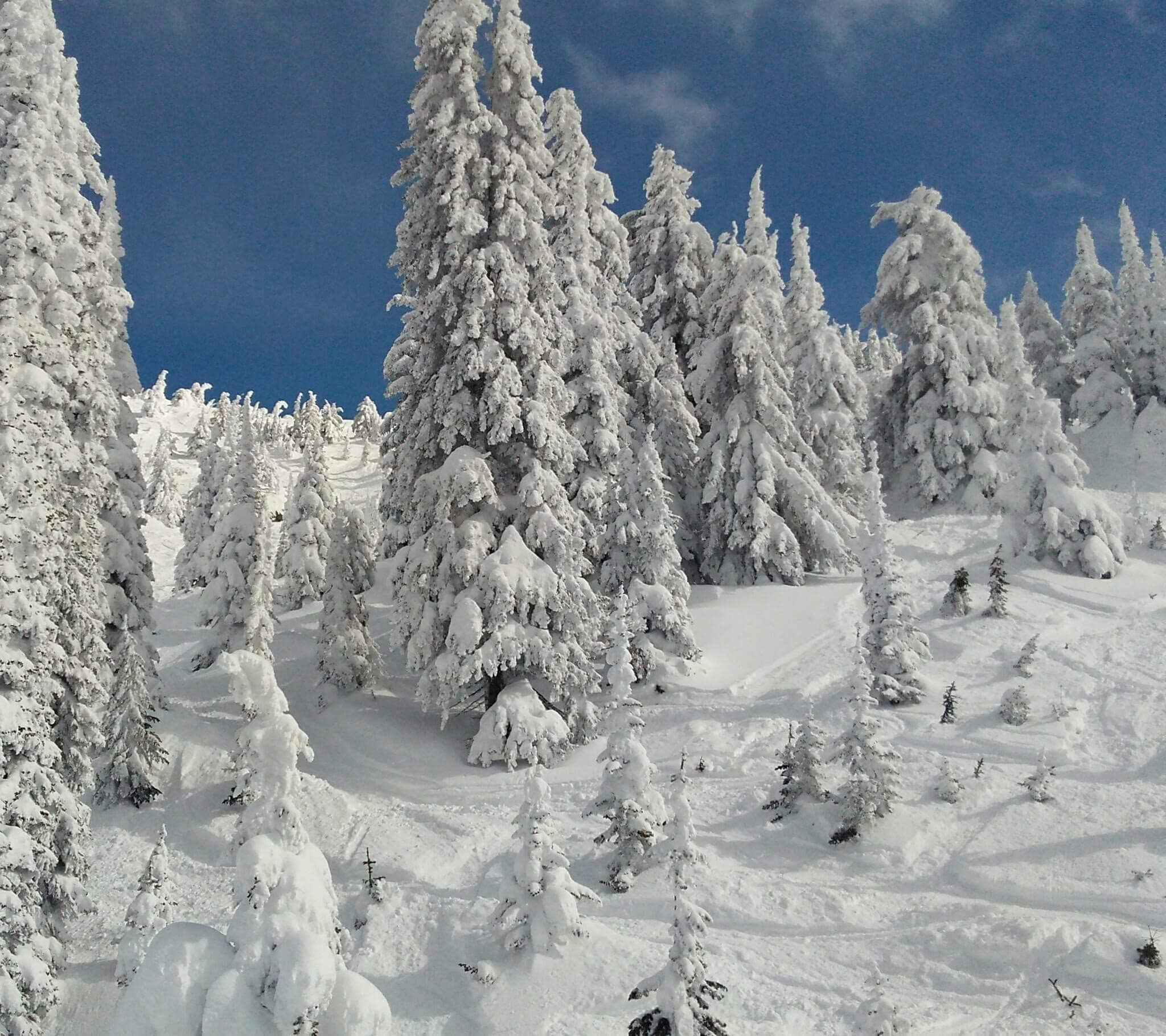 Big White Ski Resort, located 56 kilometers Southeast of Kelowna, is the third largest resort in BC and a skier's paradise.
