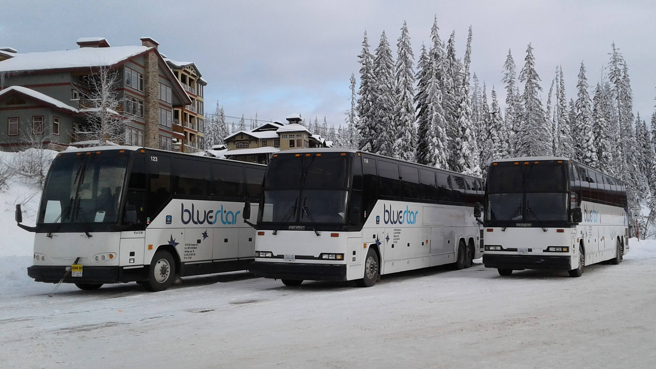 Blue Star Coachlines at Big White