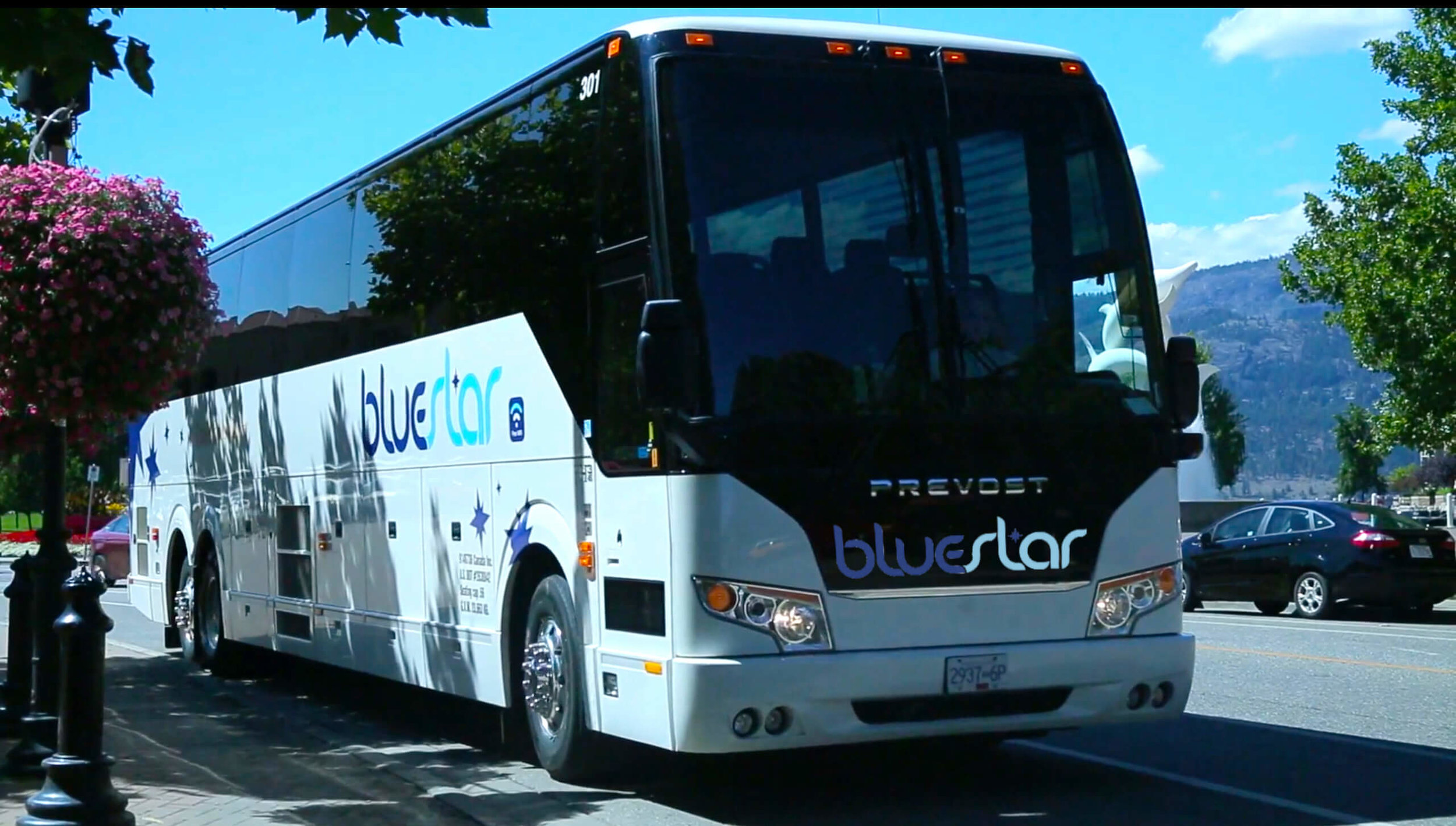 Bluestar Coachlines