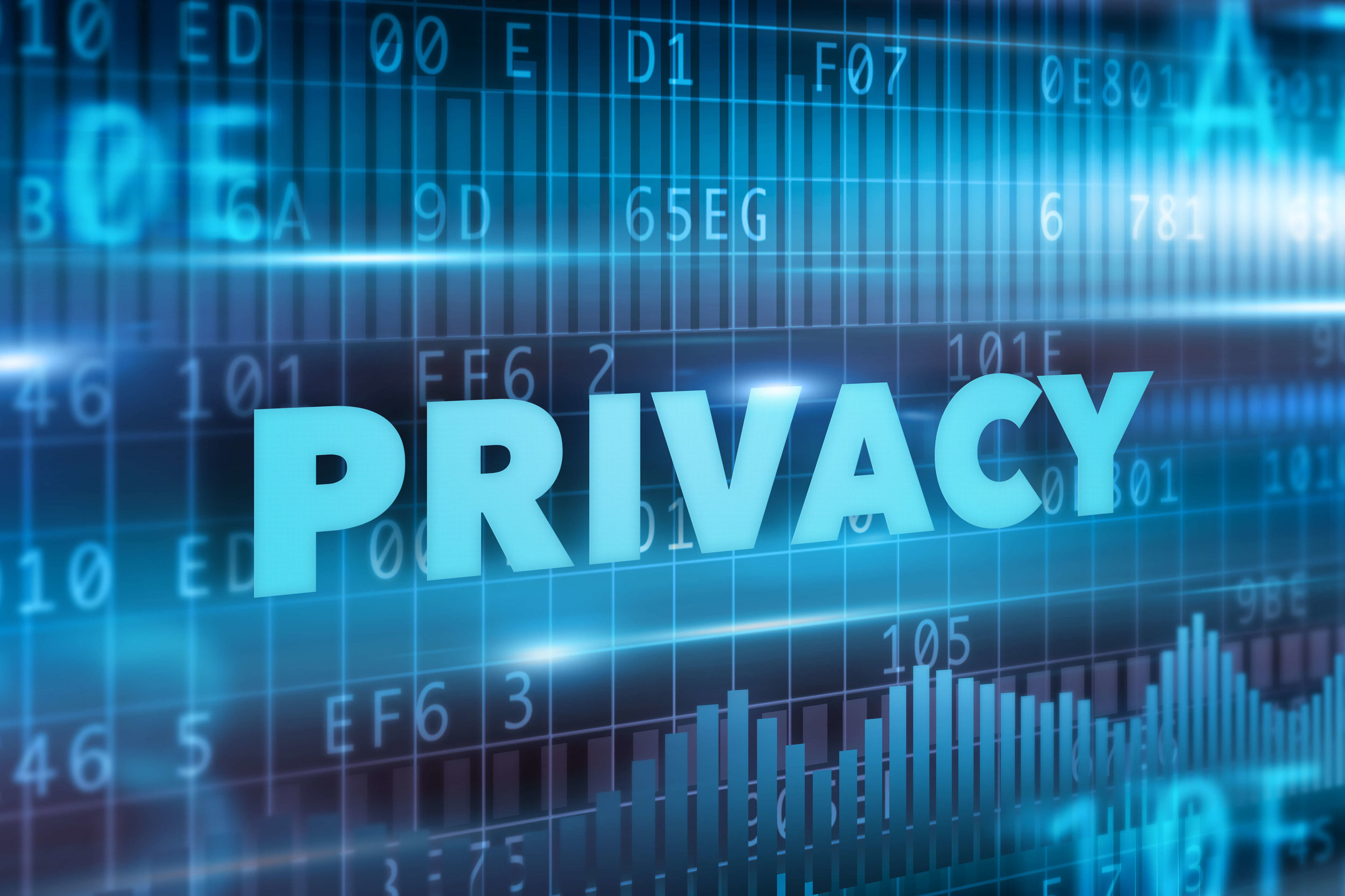 The Bluestar Coachlines Privacy Policy
