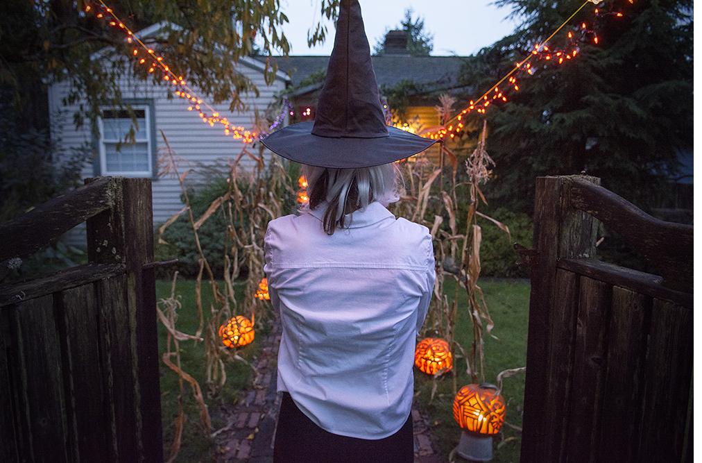 Pumpkins 2014_2.jpg