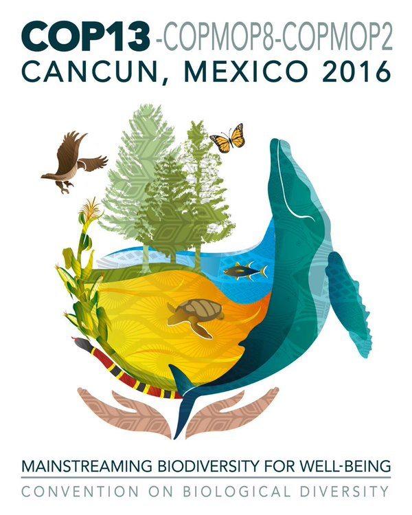 Logotipo de la COP13. Reproducido de https://whc.unesco.org/en/news/1601