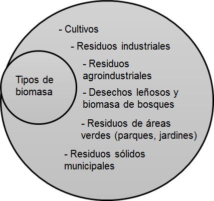 Imagen 2. Origen de la biomasa lignocelulósica. Dibujado con información de  Robak and Balcerek, 2018.