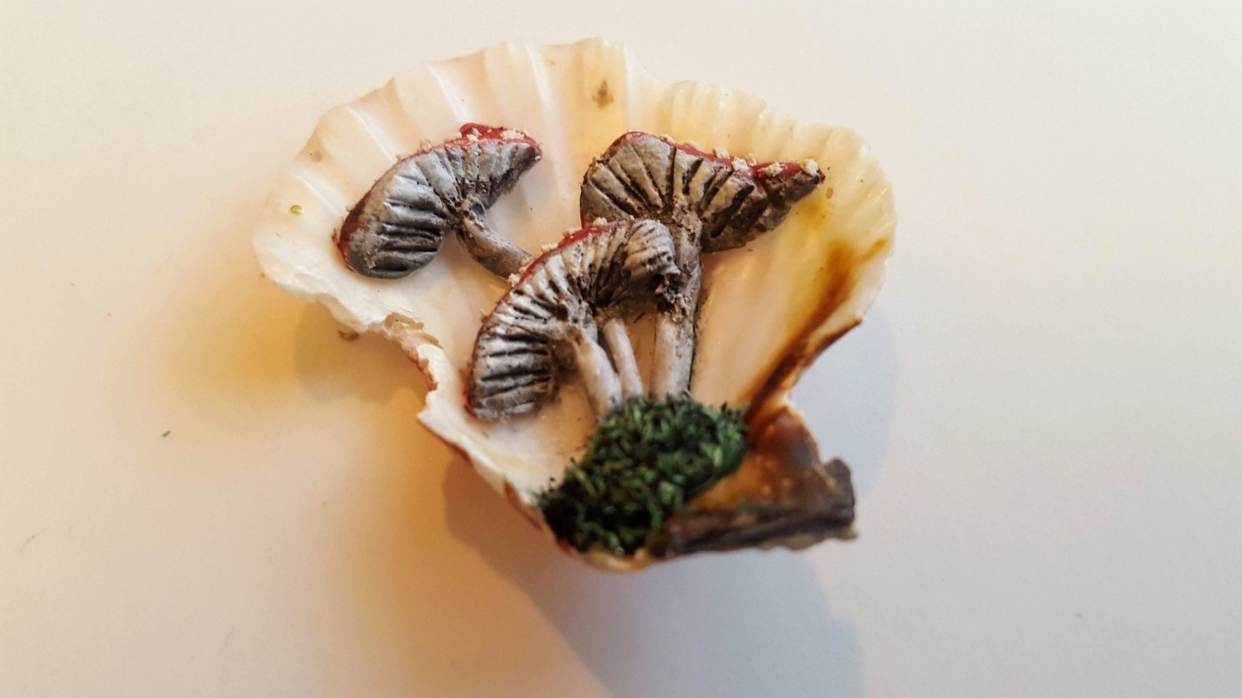 Seashell Mushroom Miniature - Buy Now!