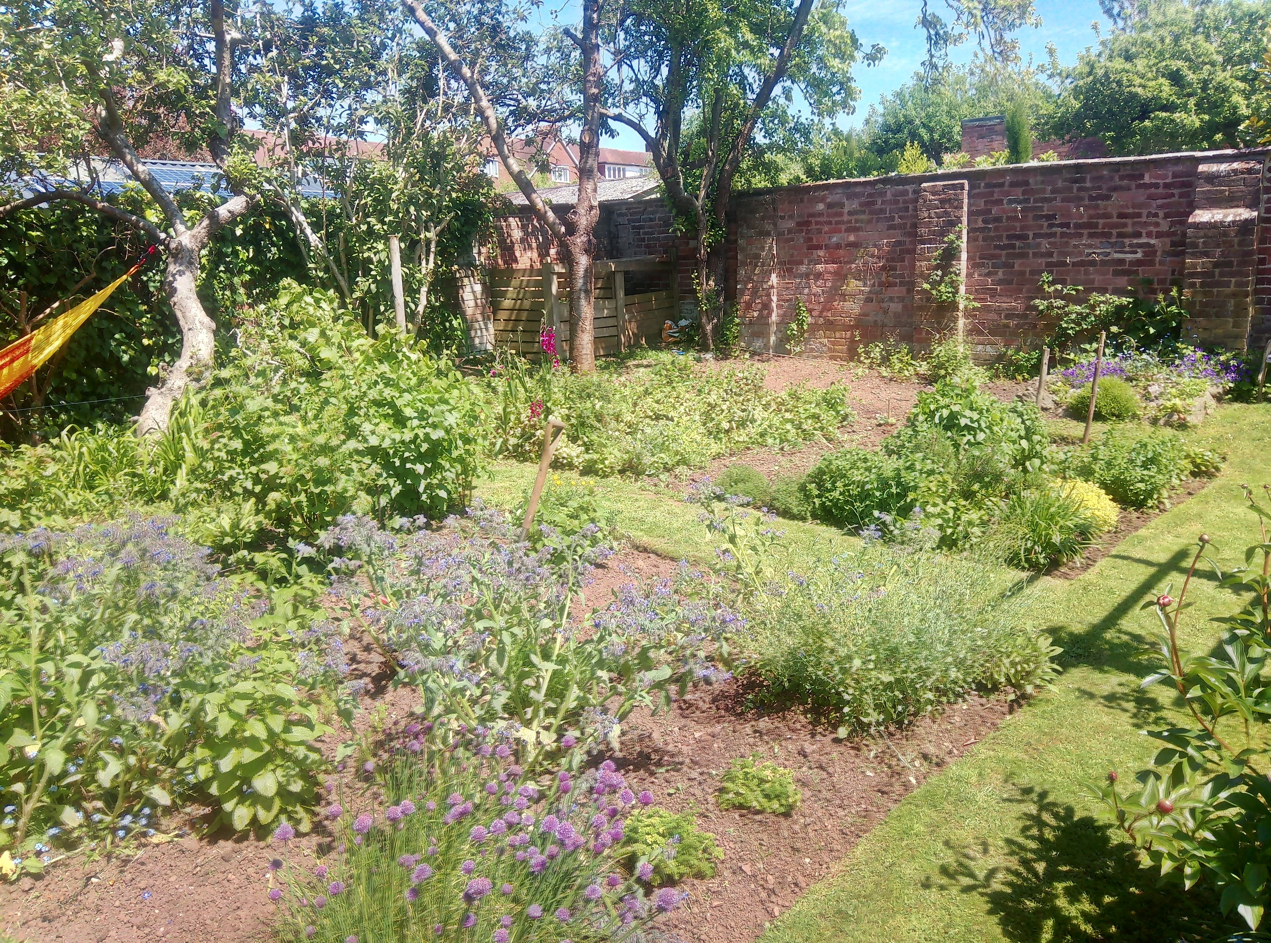 Walled+garden+makeover+1b.jpg