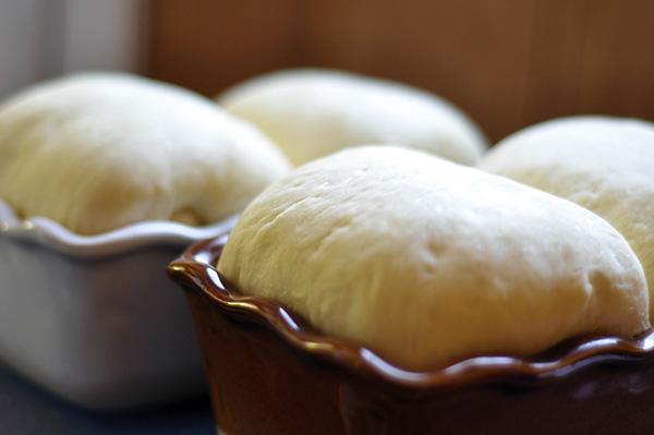 Dough in pans risen side view.jpg