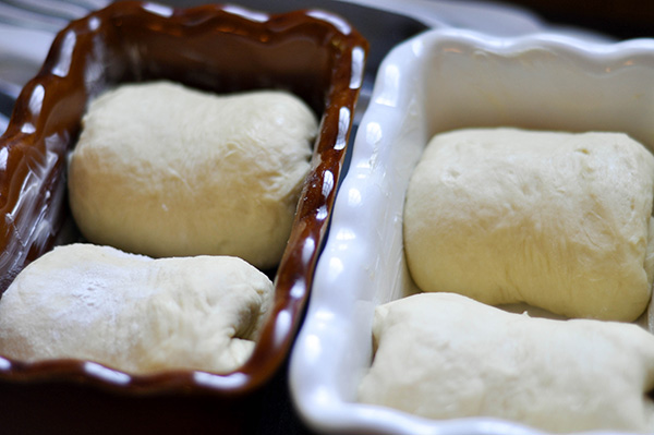 Dough in pans.jpg