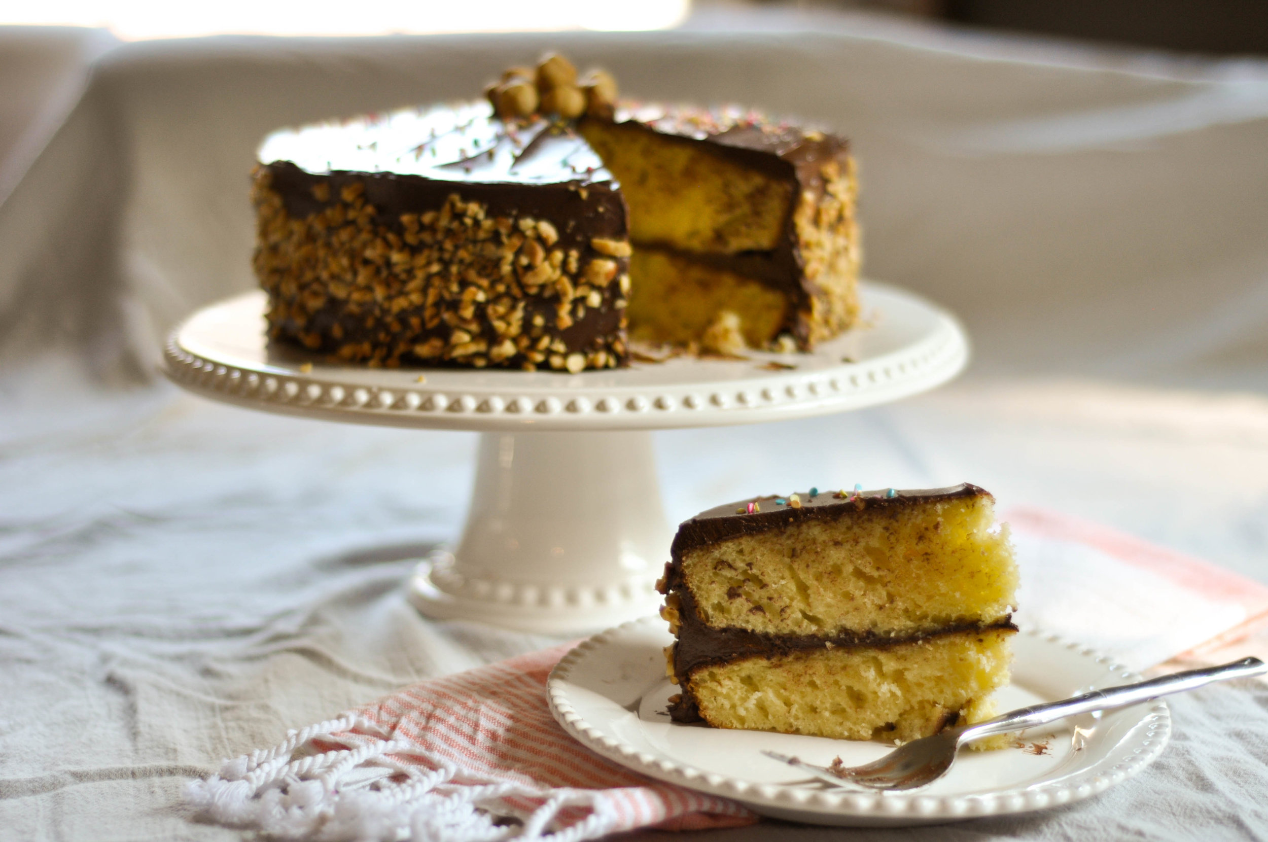 Vanilla Birthday Cake With Nutella Frosting_ Sliced CU.jpg