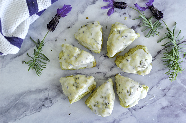 Lavender Vanilla Scones_Overhead Circle.jpg